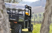 Safari Chianti Quad Experience with Picnic from Lucca