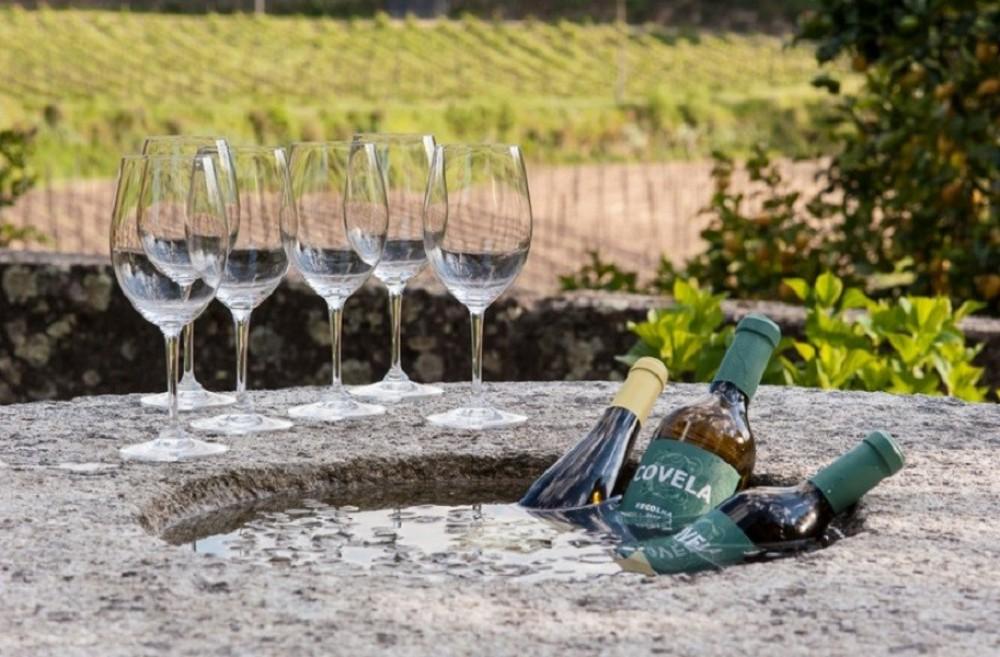 Private Vinho Verde Green Full Day Wine Tour