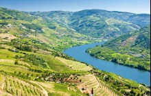 Private Douro Valley Full Day Wine Tour