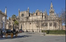 Alcazar & Cathedral Tickets