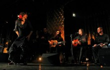 Flamenco Dance Lesson