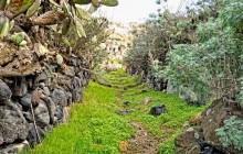 Discover Thirassia Private Tour from Santorini