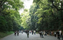 Tokyo 4 Hour Highlight Private Walking Tour