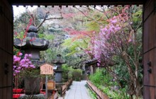 Southeast Kamakura Walking Guided Tour