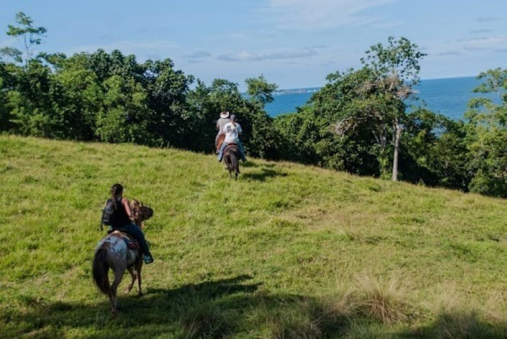 Full Day Horseback Trek