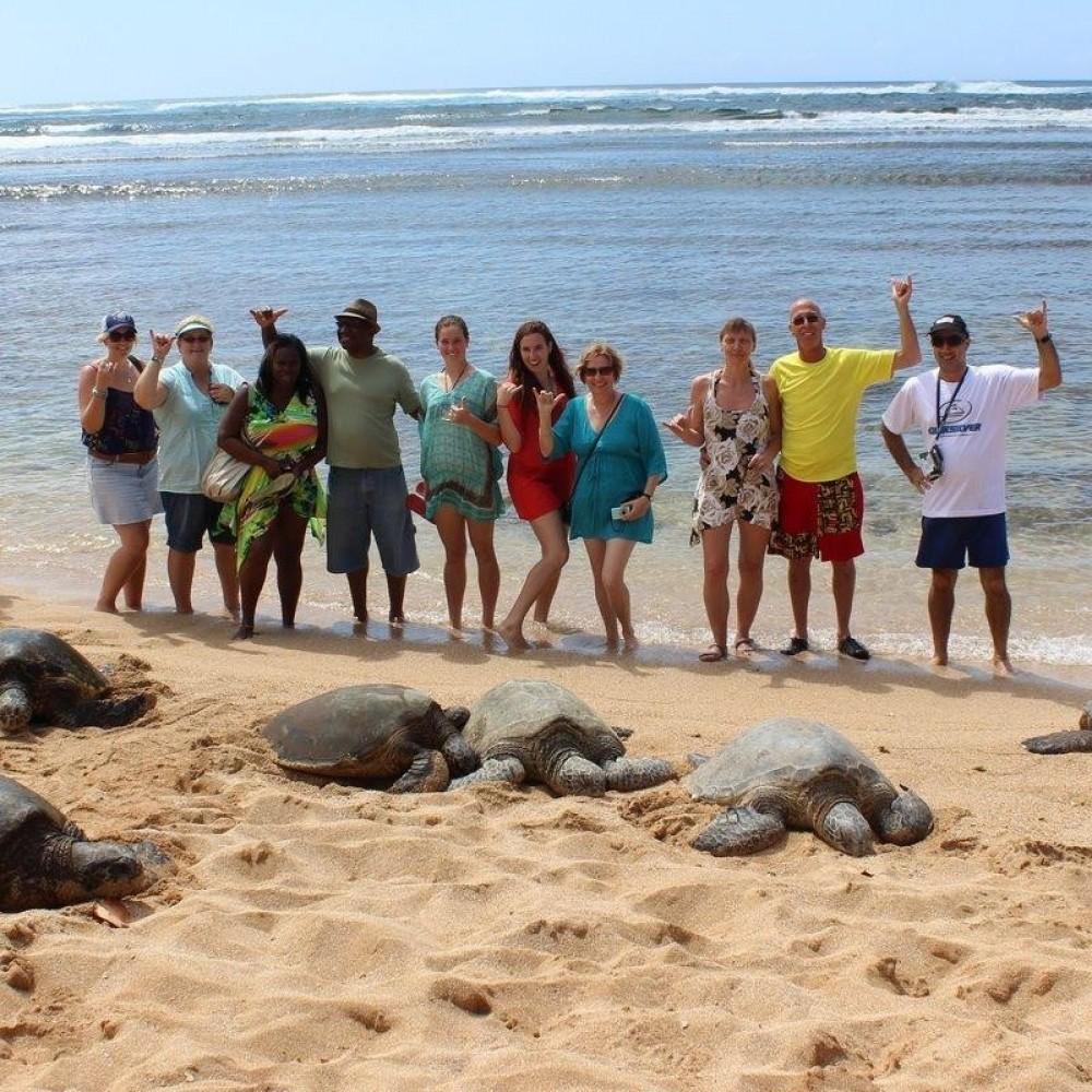 Private & Custom Oahu Circle Island Tour