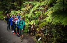 Kilauea Hike 'n Glow from Kona