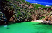 Atlantic Frontier: Berlenga Island Private Tour