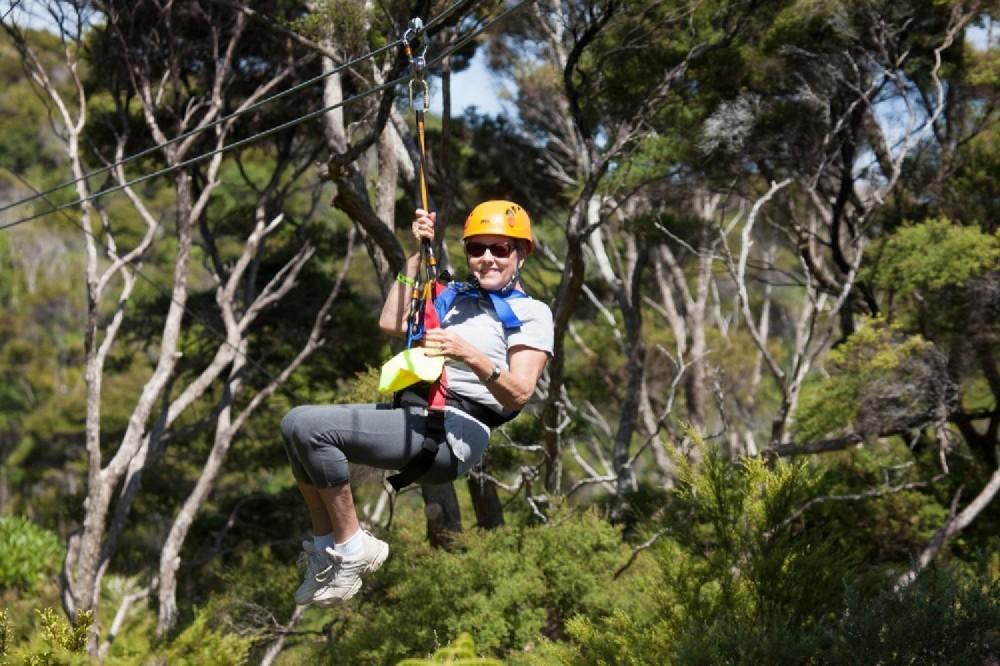 Auckland City Highlights Tour & Waiheke Island Zipline Tour