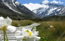 Christchurch to Queenstown via Mt Cook - Full Day Tour