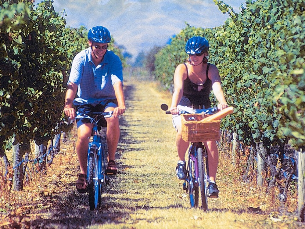 On Yer Bike Self Guided Winery Tour
