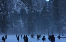 Yosemite in Winter 1-Day Tour