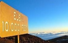 Roberts Hawaii: Shore Excursions