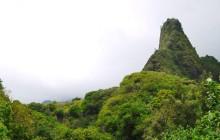 Cruise - Iao Valley & Maui Tropical Plantation Tram (Lahaina)