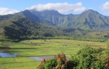 Cruise Excursion - Kauai - Hawaii Movie Tours