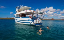 8 Day Diving Tour on M/Y Danubio Azul