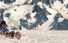 Helicopter with Glacier Landing & Dog Sledding