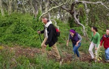 Endangered Native Habitats Birdwatching Tour