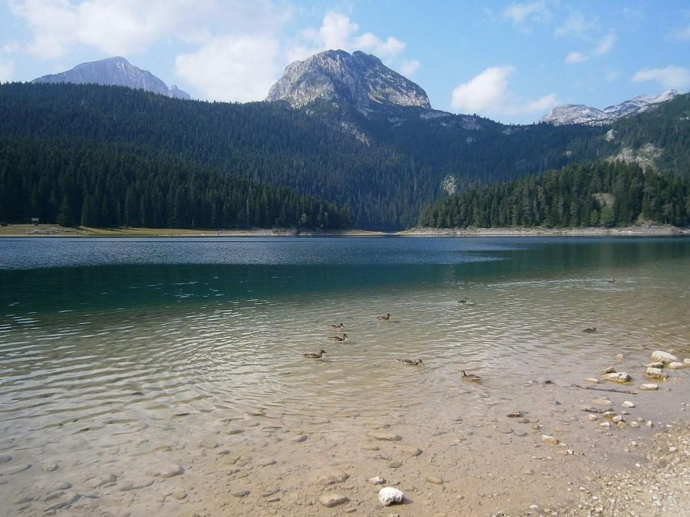 Black Lake (Montenegro)