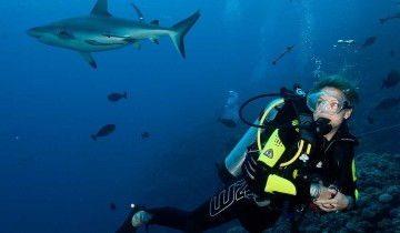 A picture of 5 Day / 4 Night Great Barrier Reef Scuba Diving Trip from Cairns