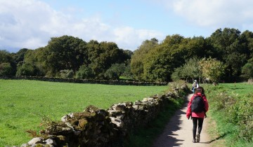 A picture of 8 Day The Classic Camino Last 100 km Guided from Santiago