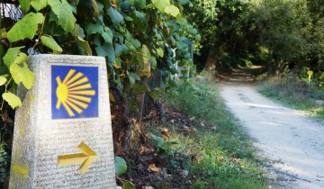 A picture of 12 Day Portuguese Coastal Easy Camino from Baiona Self Guided