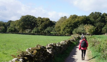 A picture of 8 Day Camino Portugues Cycling from Porto Self Guided