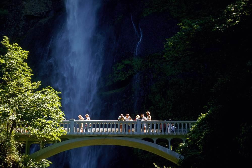 Columbia Gorge Waterfalls & Wine Tour from Portland
