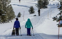 6hr Snowshoe Tour (Leisurely or Moderately Paced)