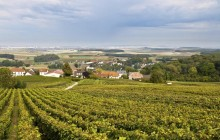 Small Group Reims Region with Moet Champagne Tasting