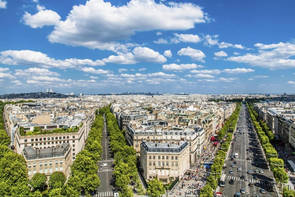 Private City Tour + Guided Louvre + Lunch Cruise (5-8pax)