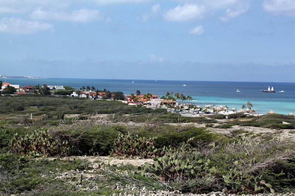 Arashi, Aruba