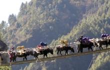 Everest Base Camp Trek with Gokyo Lake & Chola Pass-18 Days
