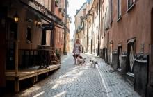 Stockholm Old Town Walk