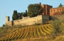 Chianti & Castle Tour from San Gimignano