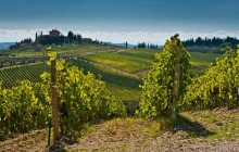 Chianti Afternoon Half Day Tour from Lucca