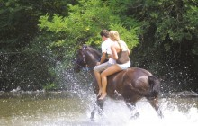 Horseback Riding From San Gimignano