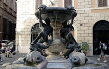 The Turtle Fountain