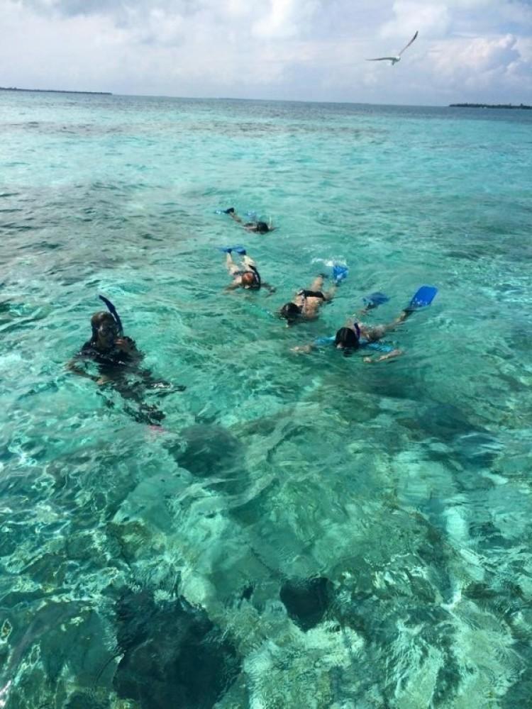 Caye Caulker Marine Reserve Half-day Tour