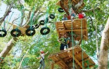 High Ropes Course And Teambuilding