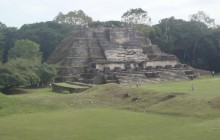 Altun-ha Mayan Site And Northern River Tour