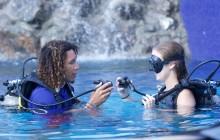 PADI Discover Scuba Diving