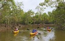 Kayak Tour