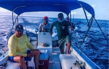 Reef Fishing: Full Day