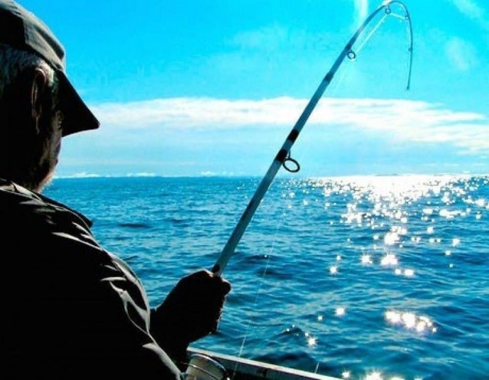 Reef Fishing: Half Day