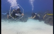 PADI Advance Open Water