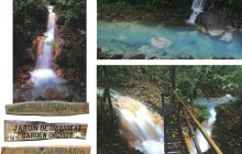 Blue River Rain Forest Jungle Adventure & Hot Springs