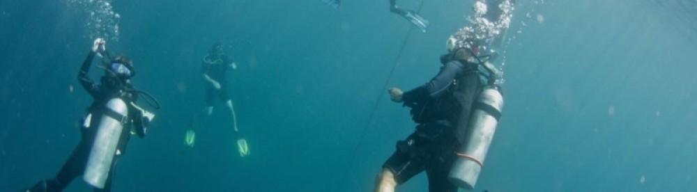 PADI Dive Master (Complete Course)