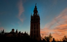 Sevilla Sightseeing Tour and Flamenco Show (Drink or Dinner)