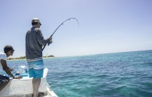 Light Tackle: Spin Fishing (Reef & Cayes) Full Day